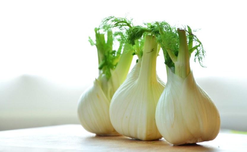 onion tor